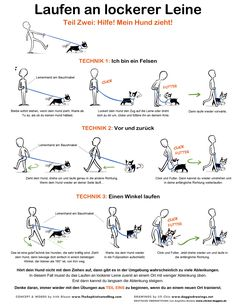 Useful Dog Obedience Training Tips – Dog Training Background Dog, Dog Training Tips, Potty Training, Pitbull Training, Puppy Leash Training, Training Classes, Obedience Training For Dogs, Training Collar, Service Dog Training