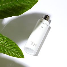We specifically formulated our #ThickeningShampoo to help with thinning and fine hair. Loquat Leaf has antioxidant properties that can fight the free radicals that are produced by the body and help in fighting signs of aging and neutralizing toxins in the body. Thickening Shampoo, Fine Hair, Cleanse, Conditioner, Cosmetics, Signs, Health, Free, Posh Hair