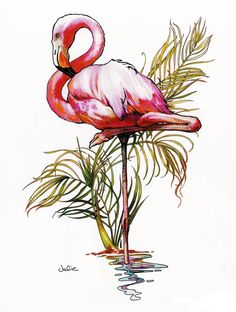 Flamingo (Julie Bell)