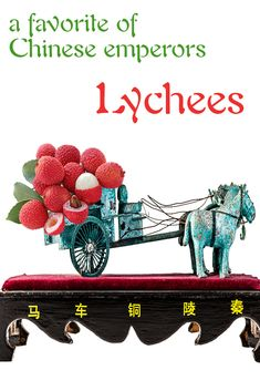Lychees were such favorite fruits of the Chinese Emperors that they set-up kind of a pony express between the fields and the palaces. Enjoy lychees, tips and recipes... http://www.brookstropicals.com/lychee/index.php
