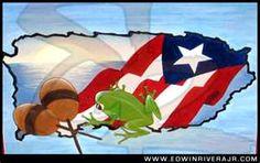 Coqui. Puerto Rico.