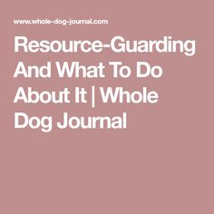 Resource-Guarding And What To Do About It | Whole Dog Journal