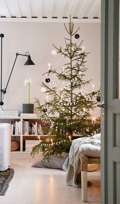 Beautiful Christmas Tree Decorating Ideas For You! Christmas Tree Decorations, Christmas Lights, Christmas Wreaths, Christmas Crafts, Christmas Carol, Rustic Christmas, Christmas Time, Beautiful Christmas Trees, Decor Ideas