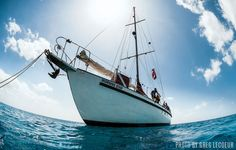 Blackbeard's Cruises' Bahamas dive adventures is one of the best options for scuba divers seeking a liveaboard trip on a budget.