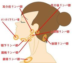 What is Acupuncture: Acupressure: Acupuncture Benefits: Acupuncture Treatment: Acupuncture for Anxiety: Acupuncture for Pain Relief: Acupuncture for Migraine: Acupuncture for Weight-loss: Acupuncture for Fertility: Herbal Medicine: Acupuncture For Anxiety, Acupuncture Benefits, Calf Muscle Workout, Face Care, Body Care, Health Diet, Health Fitness, Yoga Facial, Acupuncture