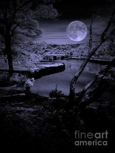 Luna See