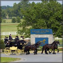 The Kentucky Horse Park was chosen as an overall winner in the Top 25 Amusement Parks and Water Parks in the United States category by TripAdvisor in its 2013 Travelers' Choice® awards for attractions. My Old Kentucky Home, Kentucky Derby, Kentucky Attractions, Kentucky Horse Farms, Horse Mane, Walking Horse, Park Pictures, Mini Vacation, Ohio River