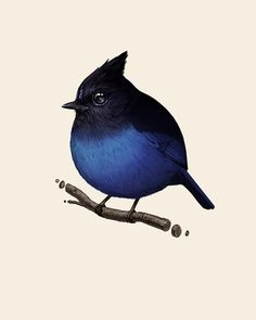 Fat Bird by Mike Mitchell