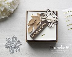 stampinup_janneke_butterflybasics_hoorayfortoday