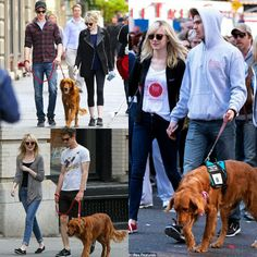 Hang out with their dog ♥