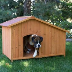 Boomer & George Asymmetrical Dog House