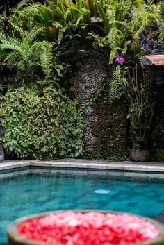 Rumah Kelinci offers accommodation with a private lounge and free WiFi. Outdoor Pool, Outdoor Dining, Outdoor Decor, Fold Up Beds, Beautiful Villas, Ubud, Private Pool, Holiday Ideas, Swimming Pools