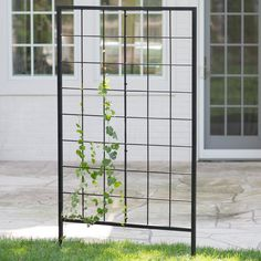 Belham Living Danbury 39-in. Metal Trellis - Let ambitious foliage climb up the Belham Living Danbury 39-in. Metal Trellis and bring some gorgeous garden charm to your outdoor space! This metal...
