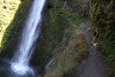 Tunnel Falls, Plunging 160 ft. on the Eagle Creek Trail, OR  <   Tunnel entrance is just to the right of the spray   /   rt
