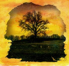 photography mixed media - Google Search