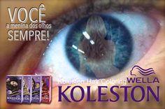 DCastro Propaganda: KOLESTON / PROPOSTA / CAMPANHA 2