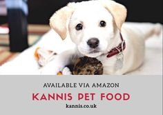 Available from @amazon and our website, the all #natural #pet food! kannis.co.uk/products.php  #kannis  #pets #dog #cats #Adopt #rescue #love #NYC #animals #FOSTER #puppies  #サプリメント #supplement #犬 #dog #dogsupplement #dogs #愛犬 #pet #petfood #ワンlife#dogsofinstgram #dogsofinstaworld #doglife #doggies #pooch #animal #pet