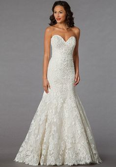 Danielle Caprese for Kleinfeld 113068 - Off White, beaded lace fit and flare.