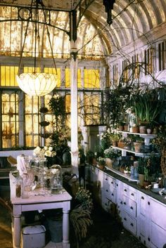 Practical Magic's kitchen's conservatory