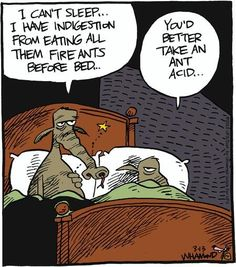 I can't sleep...I have indigestion from eating all them fire ants before bed.  You'd better take an ant acid.