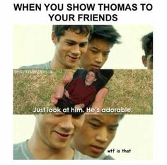"Hahaha! At first I thought Thomas was Will Poulter! :""D Dylan's face though... :""D :""D"