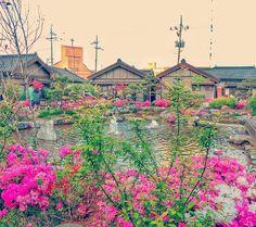 군산 고우당 #nature #naturelovers #landscape #view #trip #guesthouse #traditional #architecture #travelphotography #travel #beautiful #beautifulday #flowers #peaceful #instapic by anisia1213