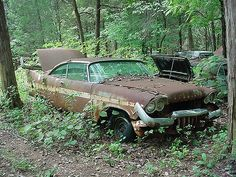 Abandoned '57 Plymouth. Sad, because these cars are gorgeous when cared for.