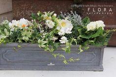 白いウィンドウボックスの画像 | フローラのガーデニング・園芸作業日記