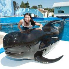 Olympic gymnast Kyla Ross at SeaWorld San Diego!