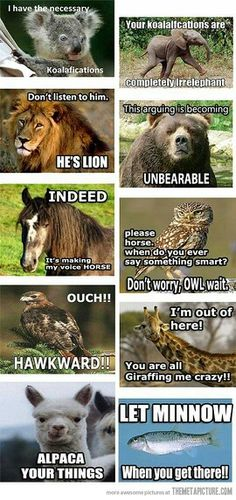 Animal puns.