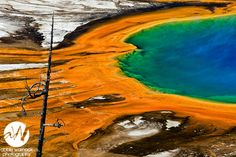 Grand Prismatic Spring Pool in the Midway Geyser Basin of Yellowstone National Park.  Prints are available for purchase by clicking on the image.  Photo by Abbie Warnock