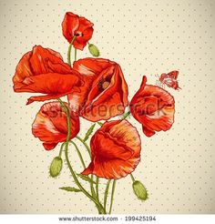 Stock Images similar to ID 393041851 - beautiful red poppy closeup on ...