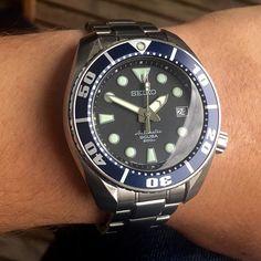 Seiko Sumo with Blue Bezel #seiko #seikosbdc001 #sbdc001 #seikosbdc003 #sbdc003 #seikowatch #seikodiver #seikosumo #watcholic #watchporn #dailywatch #watchoftheday #wristwatch #everydayawatch #watchmerchant #mercedesbenzkey
