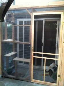 I will definitely have a catio one day! Catio Designs | Outdor Cat Enclosure Designs to Make Your Cat Meow.