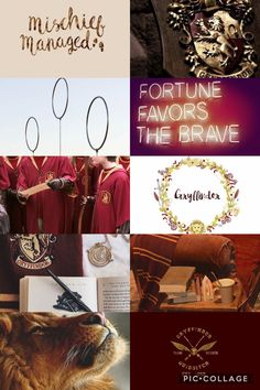 Gryffindor aesthetic