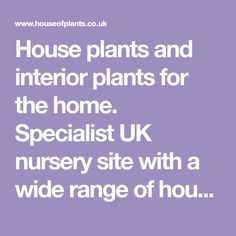 House plants and interior plants for the home. Specialist UK nursery site with a wide range of houseplants, tips and care notes.