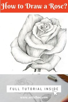 How to draw a rose: step by step tutorial in pencil - Art interests Flower Drawing Tutorials, Easy Drawing Tutorial, Sketches Tutorial, Art Tutorials, Step By Step Sketches, Flower Drawings, Rose Drawing Simple, Floral Drawing, Drawing Art