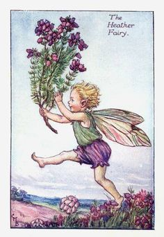Heather Fairy Print or any of the original vintage Cicely Mary Barker