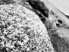 Black and White Rock by A. Cheri Kallner
