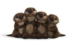 Disney Introduces New 'Finding Dory' Characters And The Best Pixar Easter Egg Ever Baby Otters, Art Disney, Disney Love, Disney And Dreamworks, Disney Pixar, Disney Wiki, Dory Characters, Cuddle Party, Baby Animals