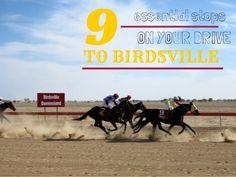 9 essential stops from Brisbane to Birdsville by Sos Mattsson via Brisbane, Essentials, Australia, Travel, Viajes, Destinations, Traveling, Trips