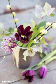 Ihanat ideat keväisiin kukka-asetelmiin | Avotakka
