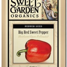 Big Red Sweet Pepper  from The Scribbled Hollow for $2.89 on Square Market