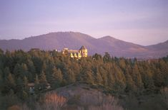 Morocco, Middle Atlas, Ifrane, King's summer residence, set in dense cedar forest, dwarfed by mountains