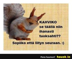 Kahviko se taall... - HAUSK.in Staff Room, Jokes, Lol, Pray, Laughing So Hard, Chistes, Memes, Funny Jokes, Funny Pranks
