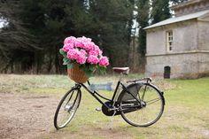 Wedding signage using a bicycle