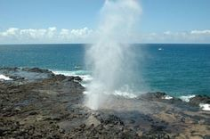 Why Kauai Deserves a Spot On Your Bucket List: Enjoy Kauai's Sunny South Shore