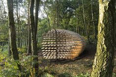 'Perspectives' is an organic pavilion structure covered with cedar shingles, which sits atop the beautiful Surrey Hills at Winterfold. Hotel Architecture, Cedar Shingles, Surrey, Pavilion, Hanging Chair, Public, Organic, Shapes, Green