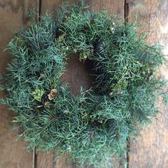 green wreath.Alley_kotani.