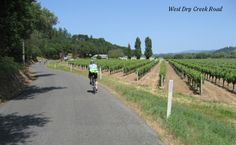 "Dry Creek, Anderson Valley Ride, the definitive ""Wine Country "" ride!"